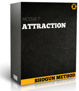 The-Shogun-Method-review