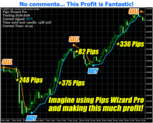 Pips Wizard Pro Review