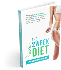 The-2-Week-Diet-System-e1475315430321