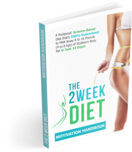 The-2-Week-Diet-System-book-e1475315430321